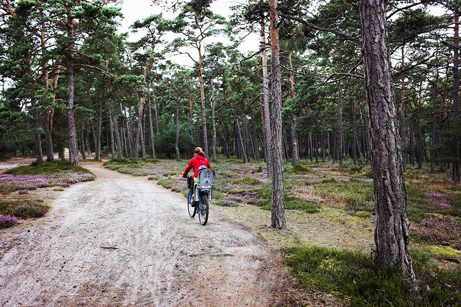 bałtyk+rower05