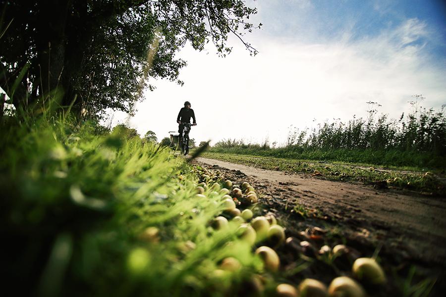 bałtyk+rower08