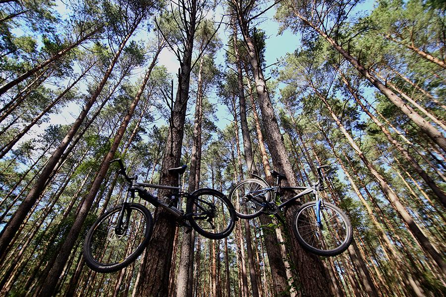 bałtyk+rower19