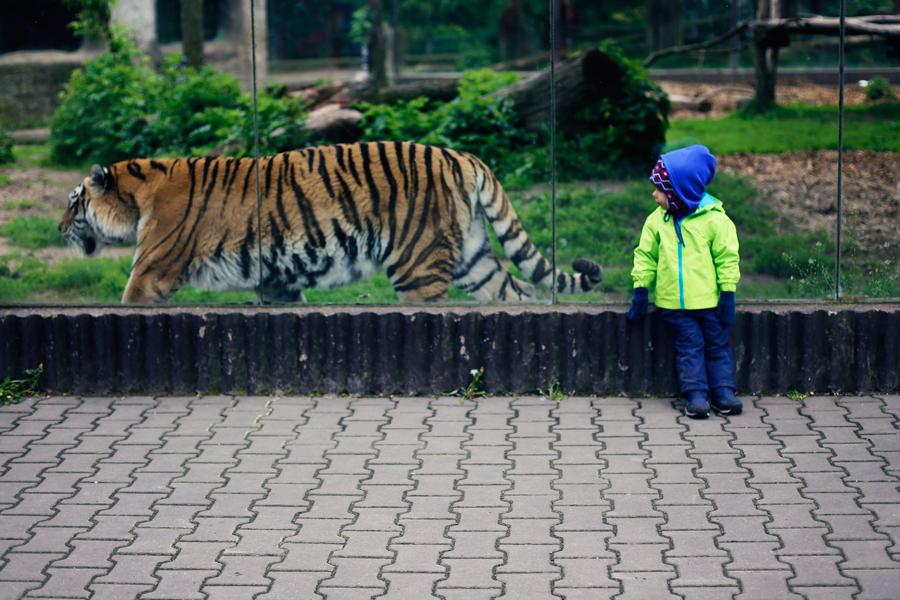 majówkaCZ_zoo09