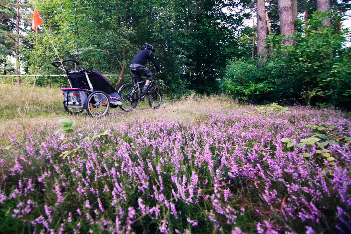 przyczepka rowerowa dla dzieci012