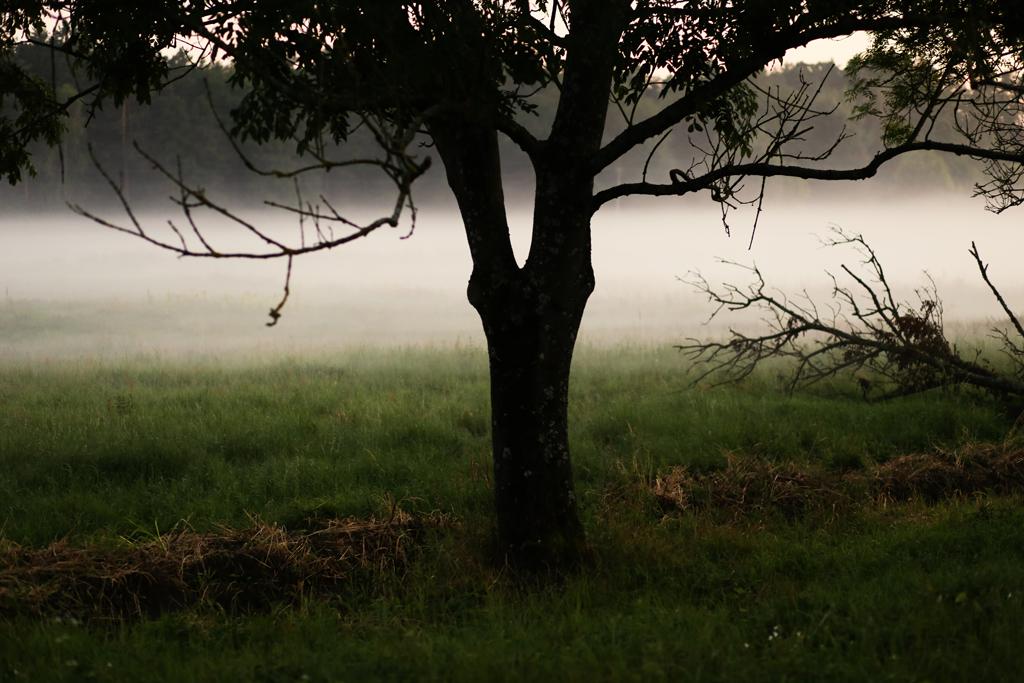roztocze-gorajec031