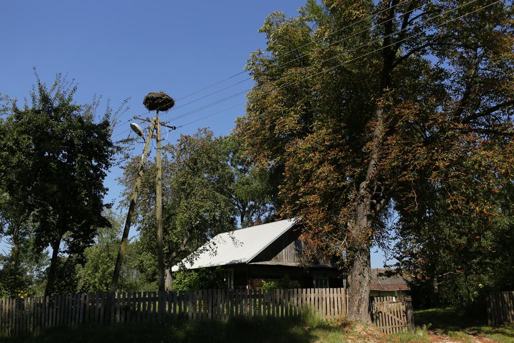 roztocze-gorajec048