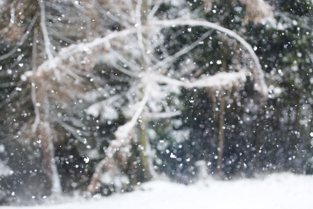swiateczny-klimat013
