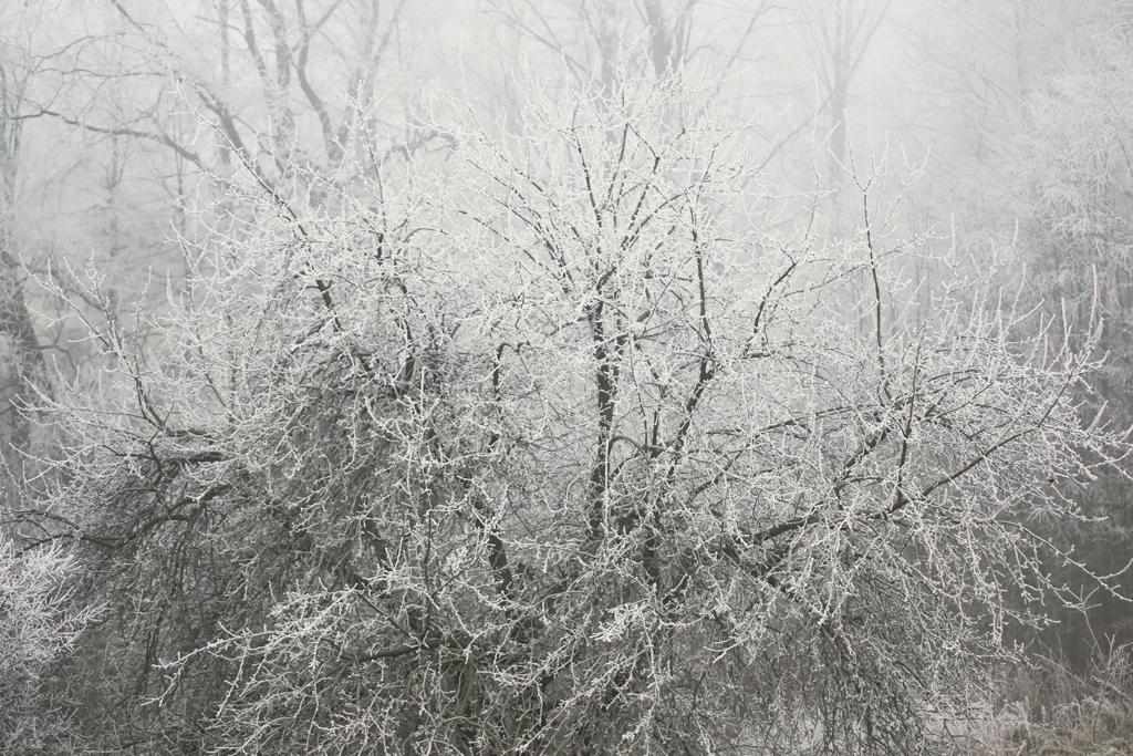 swiateczny-klimat034