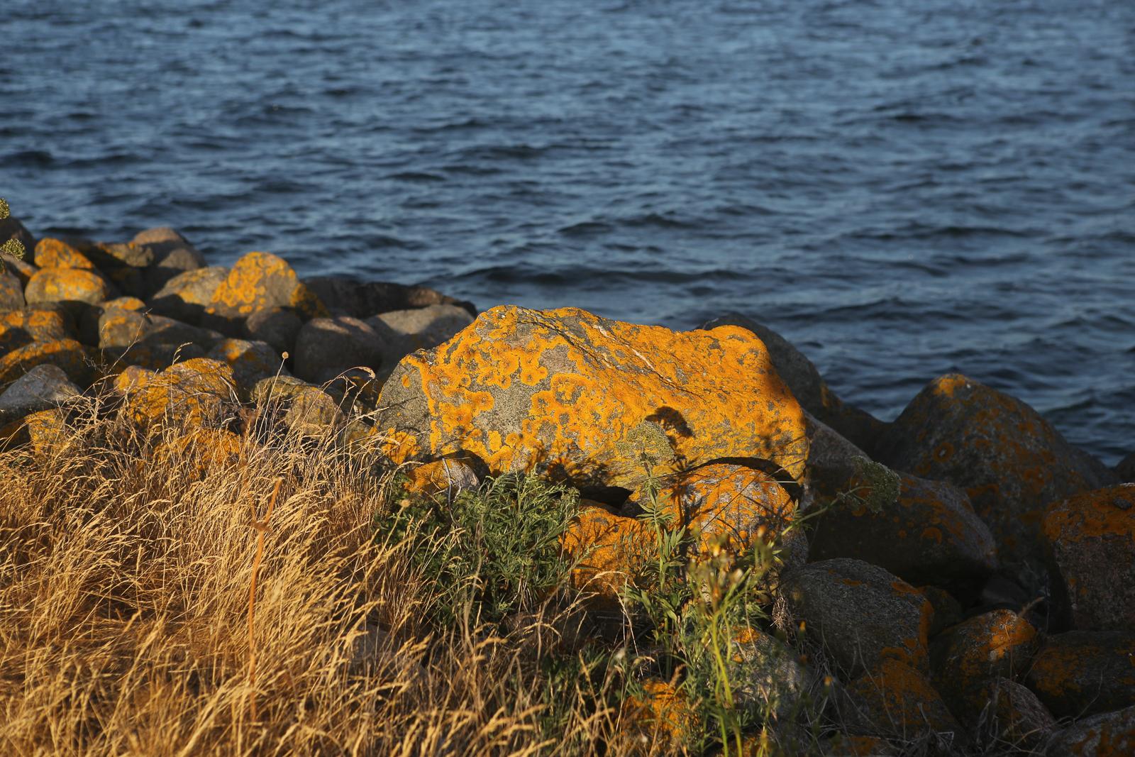 szwecja przyroda009